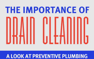 The Importance of Drain Cleaning [Infographic]